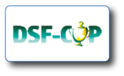 dsf-cup